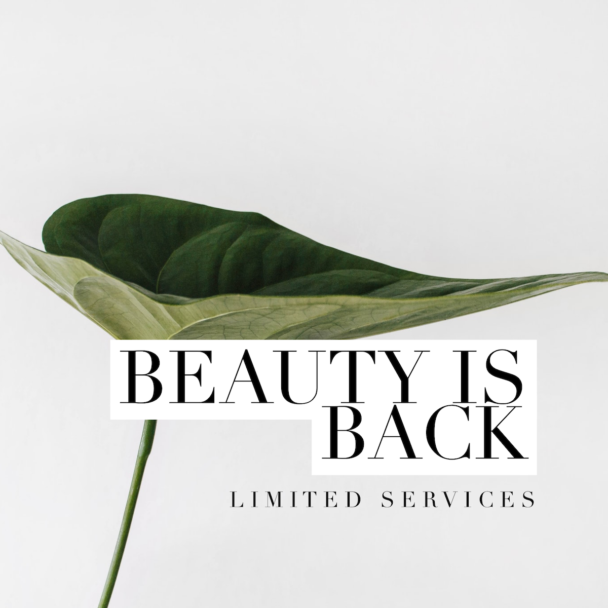 Beauty is BACK! Limited Services Available from Monday 13th July
